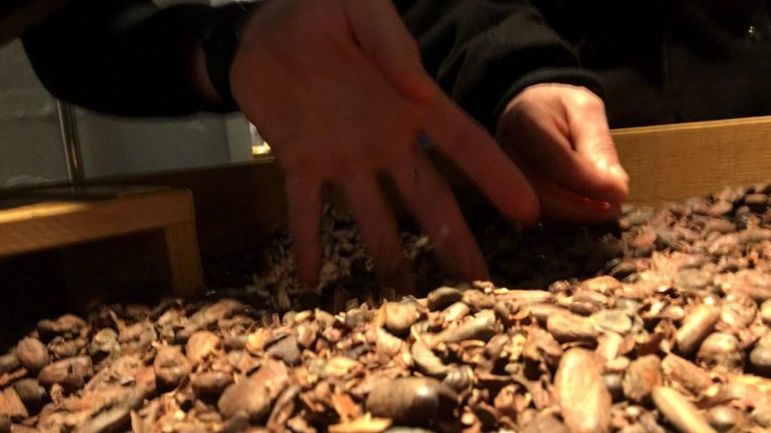 Maison Cailler chocolat Mardi AM VE suisse CFATA MFR Puy-Sec (16)