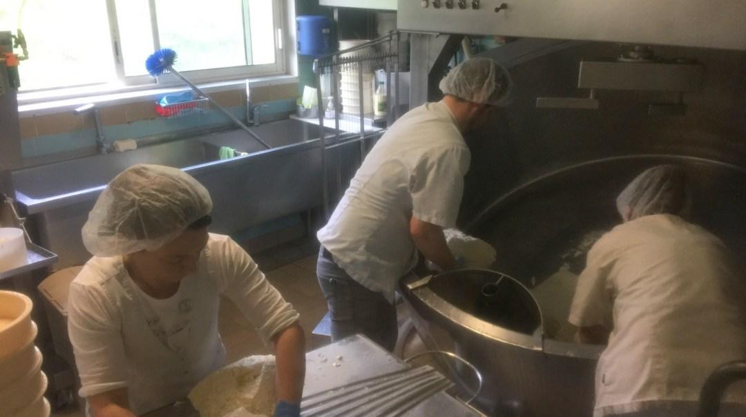 La Ferme de Bellonte Fabrication de fromage Saint-Nectaire (27)