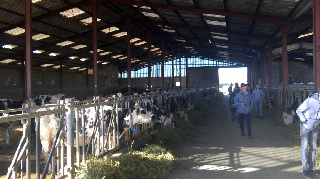 Visite GAEC Le Moulin Des Dames TA1 Octobre 2018 (9)