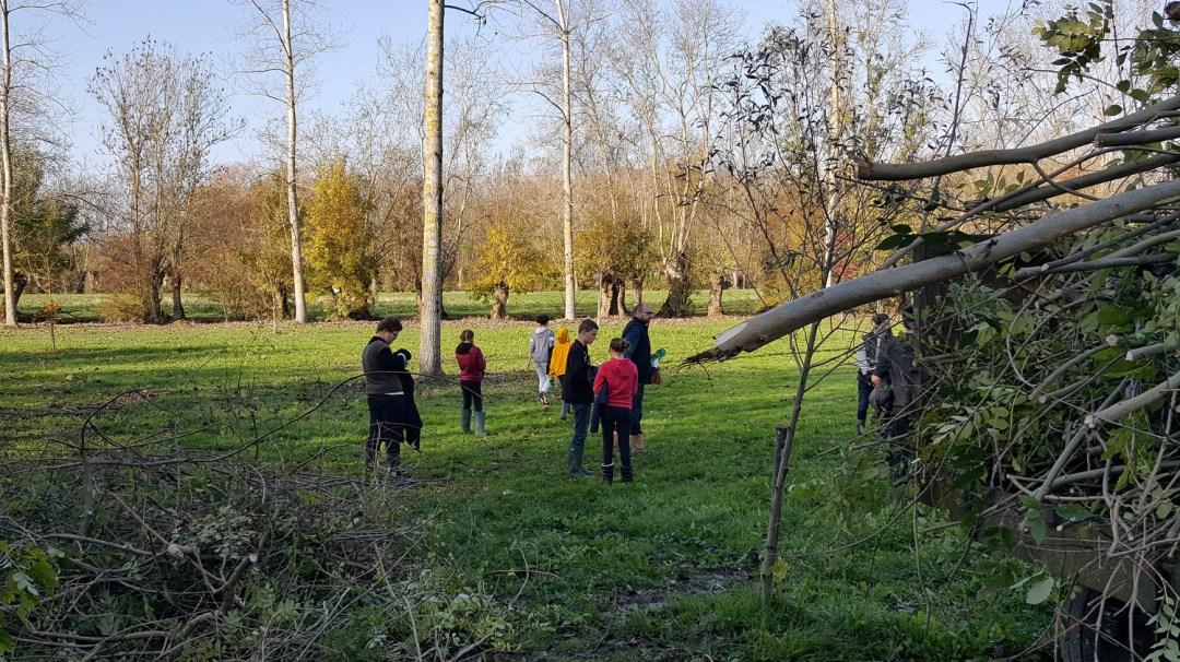 Ecurie du Marais Parc du Marais Poitevin novembre 2018 Maraîchins (21)
