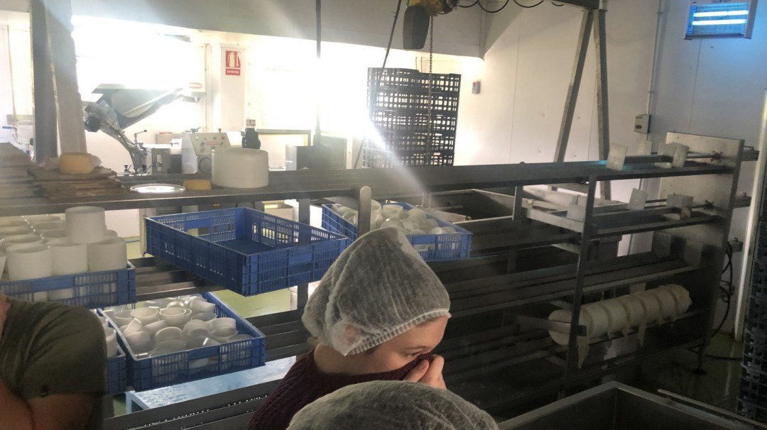 Visite fromagerie (27)