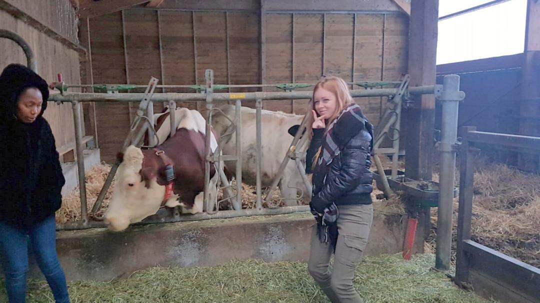 lait produire transformer vendre Bazinière CAPaSAPVER mfrpuysec (2)