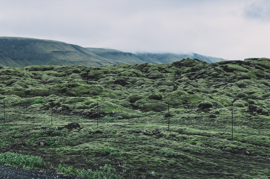 IcelandHofnHella-MGallegly--1237