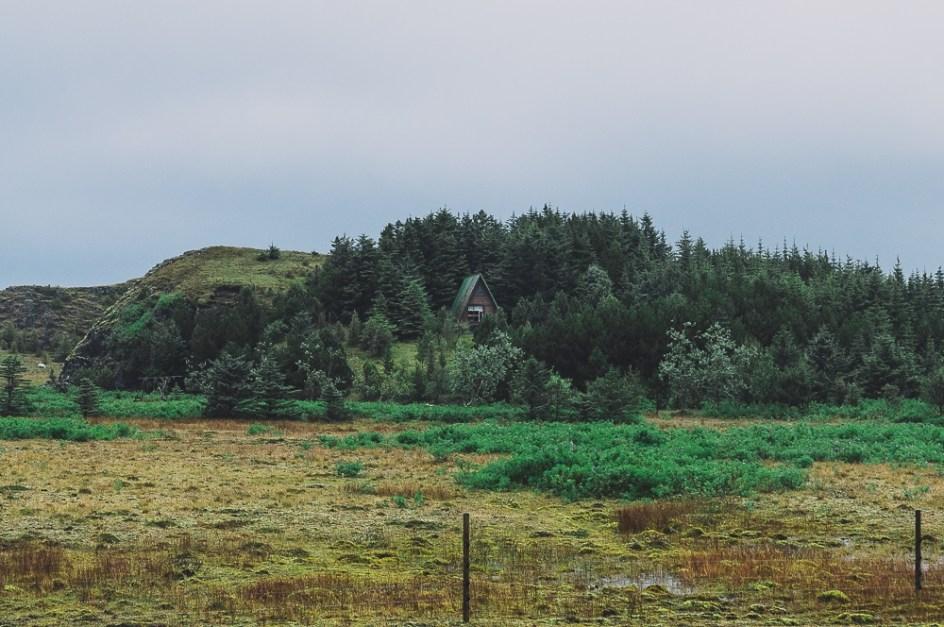 IcelandHofnHella-MGallegly--1386