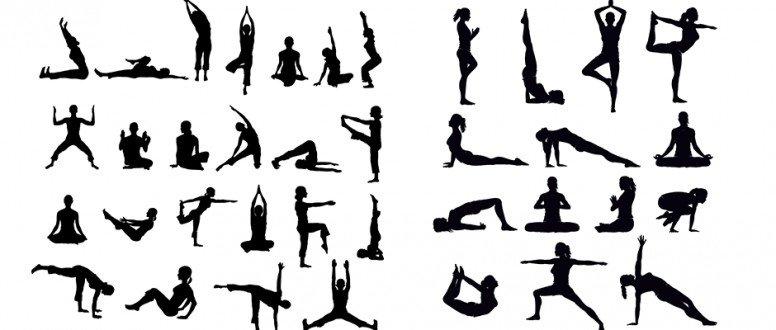 فائدة التمارين الرياضية