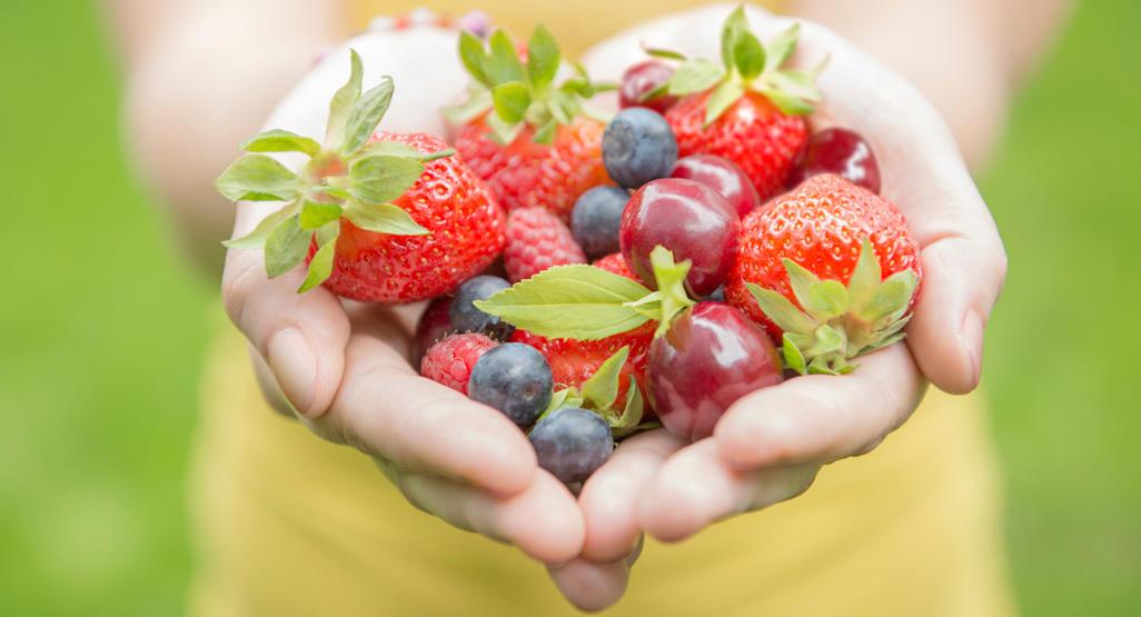 نظام غذائي يجب اتباعه قبل البدء في علاج الخصوبة