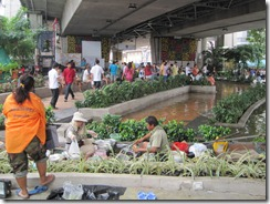 2011_10_20 Flooded Market (7)