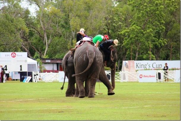 2012_09_06 Thailand Hua Hin Elephant Polo (12)