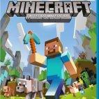 Wii U: Minecraft Wii U Edition