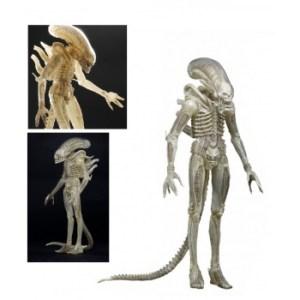 Alien - ALIEN Translucent Prototype Suit Concept Figure 1/4 Scale 56cm (One-Run-Production)