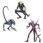 Alien vs Predator - Alien Arcade 7-inch Scale Action Figure Assortment (14)