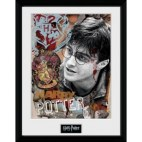 GBeye Collector Print - Harry Potter 30x40cm