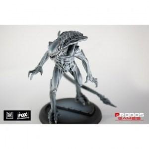 Alien vs Predator: Alien Royal Guard