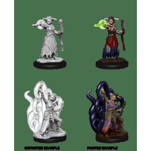 D&D Nolzurs Marvelous Miniatures - Female Human Warlock (6 Units)