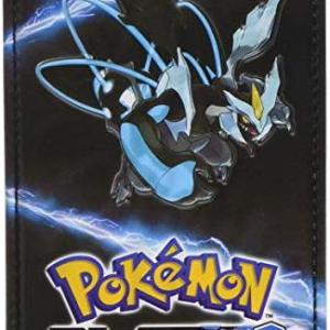 NDS: Pokemon Black Pouch