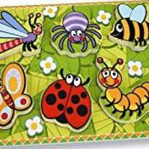 Andreu Toys 30 x 22.5 x 2 cm Insects First Puzzle (Multi-Colour)