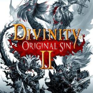 Divinity: Original Sin II (latauskoodi)