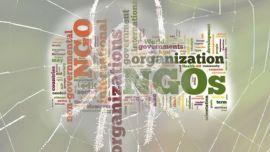 NGO (Non Govermental Organizaton) Nedir? - 2