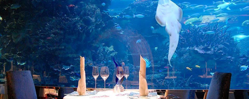 Miglior ristorante pesce Milano MI-AMI