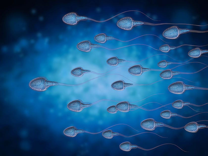 Acupuncture Male Infertility in Miami - DeJongh Acupuncture Clinic