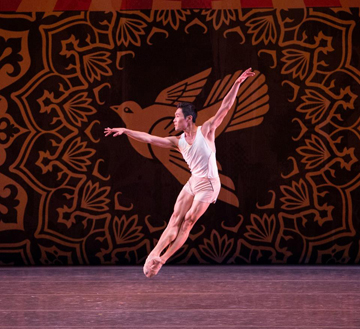 Heatscape by Miami City Ballet. (Photo by Daniel Azoulay)