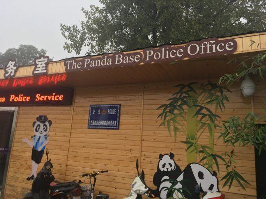 china-panda-police-office