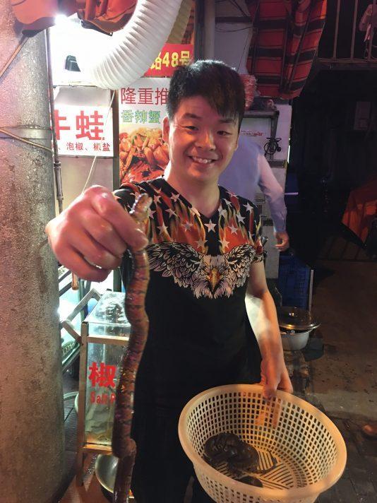 china-snake