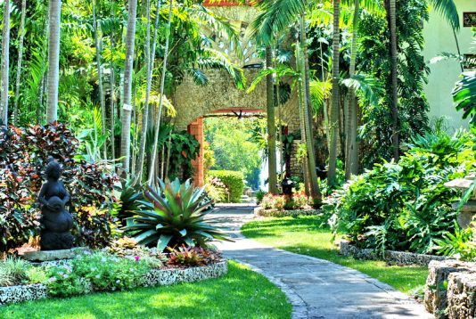 miami garden tours,MiamiCurated, The Villagers, Kampong
