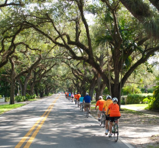 bike tours miami, bike tours coral gables, biking miami, miami biking, miami bike tours, miami bike rentals, bike rentals miami