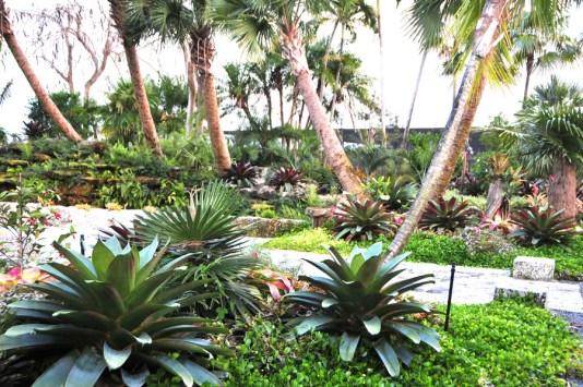 miami garden tours, MiamiCurated