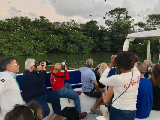 sunset cruise Miami, day cruise Miami, Pelican harbor, MiamiCurated