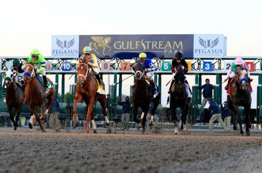 pegasus gulfstream, horseracing miami, pegasus 2019, gulfstream park miami, miamicurated