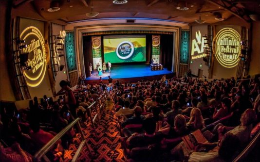 miami film festivals, brazilian film festival miami 2019, brazilian film festival, MiamiCurated