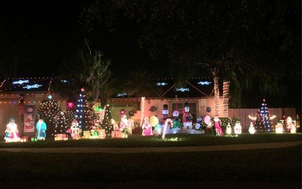 christmas lights miami # 14