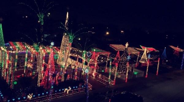 christmas lights miami # 36