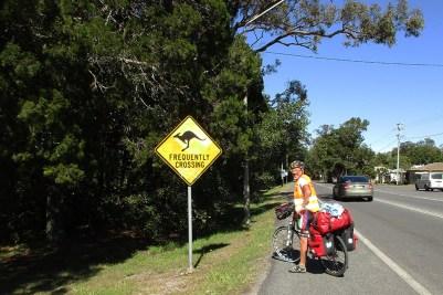 5 Australia 2015_cartello stradale attraversamento canguri