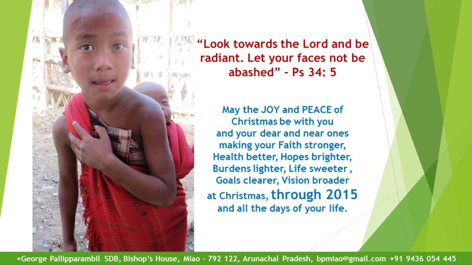 Miao Christmas Card 2014