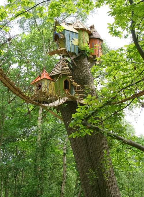 Tree House, Norfolk, England