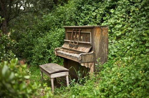 Forest Music, Monterey, California