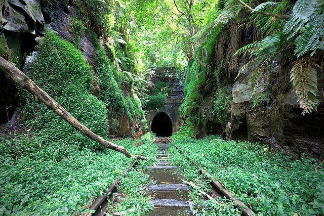Abandoned Railroad, New South Wales, Australia