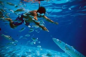 Snorkel en Cancun