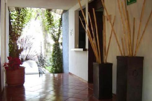 Hotel Los Girasoles3