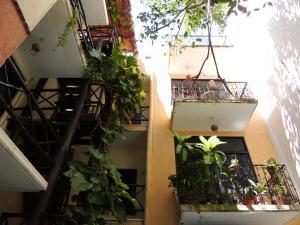 hotel-y-condominio-5-avenida-apartment-playa-del-carmen