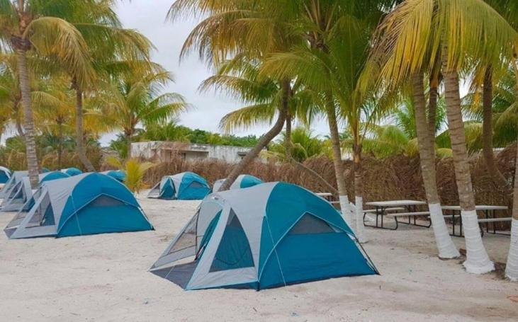 Camping Coconut 3
