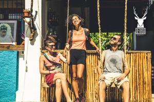 Venado Hostel cancun