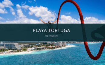 playa tortugas mi cancun