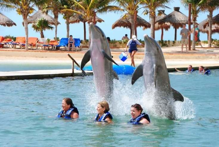 Actividades para niños en Cancún