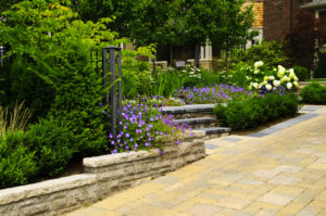 Avoid These Landscaping Mistakes