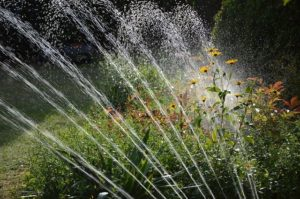 Starting Up Your Irrigation System in Spring