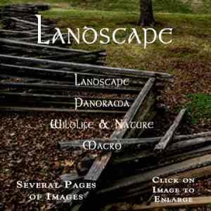 Landscape Logo2